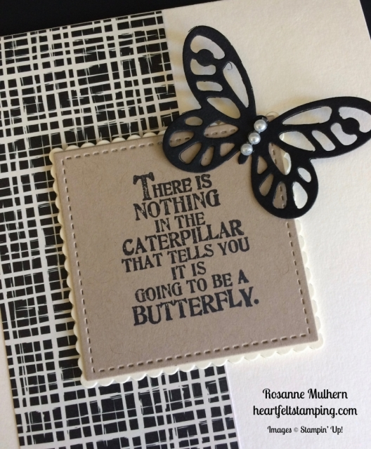 Stampin Up Butterfly Basics Friendship Card idea - Rosanne Mulhern stampinup