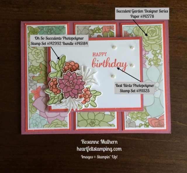 Stampin Up Oh So Succulents Birthday Cards Ideas - Rosanne Mulhern