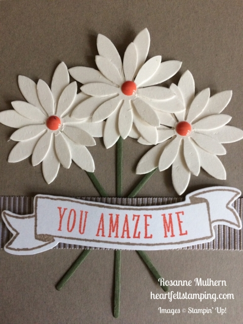 Stampin Up Succulents Just Becuase Cards Idea - Rosanne Mulhern stampinup