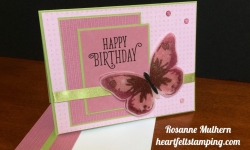 Watercolor Wings Birthday Card Idea - Rosanne Mulhern stampinup