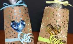 Stampin Up Foil Frenzy Mini Treat Bags - Rosanne Mulhern