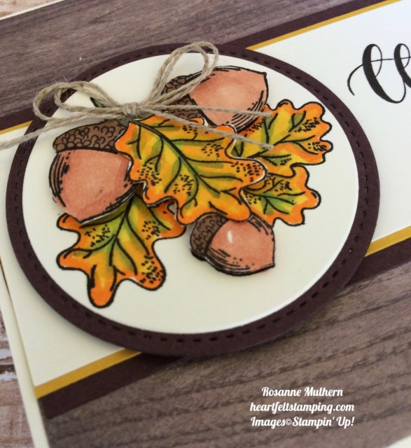 Stampin Up Count My Blessings Thinking of You Cards Ideas - Rosanne Mulhern