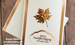 Stampin Up Painted Harvest Thanksgiving:Thank you cards - Rosanne Mulhern