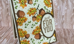 Stampin Up Count My Blessings Thank You cards - Rosanne Mulhern
