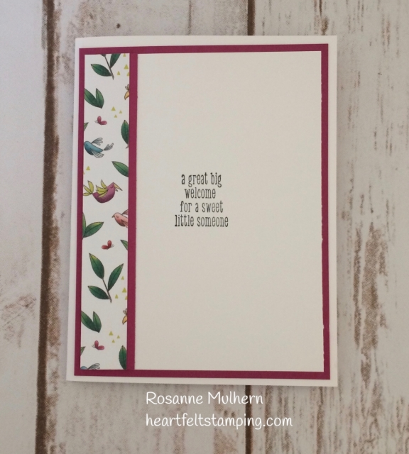 Stampin Up Animal Outing Baby Card- Rosanne Mulhern Heartfelt Stamping