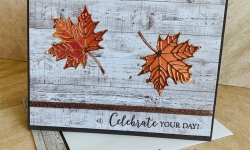 Stampin Up Colorful Seasons Masculine Birthday Card Ideas - Rosanne Mulhern stampinup