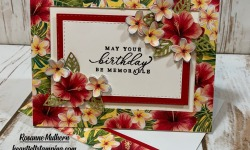 Stampin Up Tropical Oasis Birthday Card Idea - Rosanne Mulhern stampinup