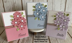 Daisy Lane Friendship Card Ideas - Rosanne Mulhern stmpinup
