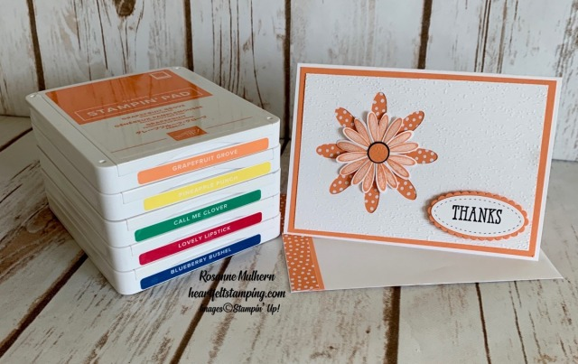 Stampin Up Daisy In-Color Thank You Notes - Rosanne Mulhern stampinup