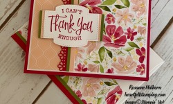Stampin Up So Sentimental Get Well Card Idea-Rosanne Mulhern stampinup