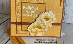 Stampin Up Tasteful Touches Birthday Card Idea -Rosanne Mulhern stampinup
